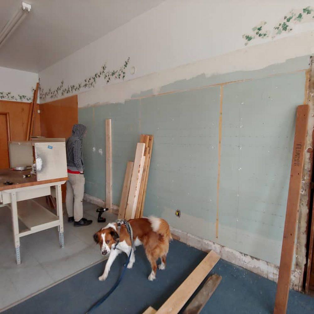 Gym dog, Rhett, unsure about this new environment